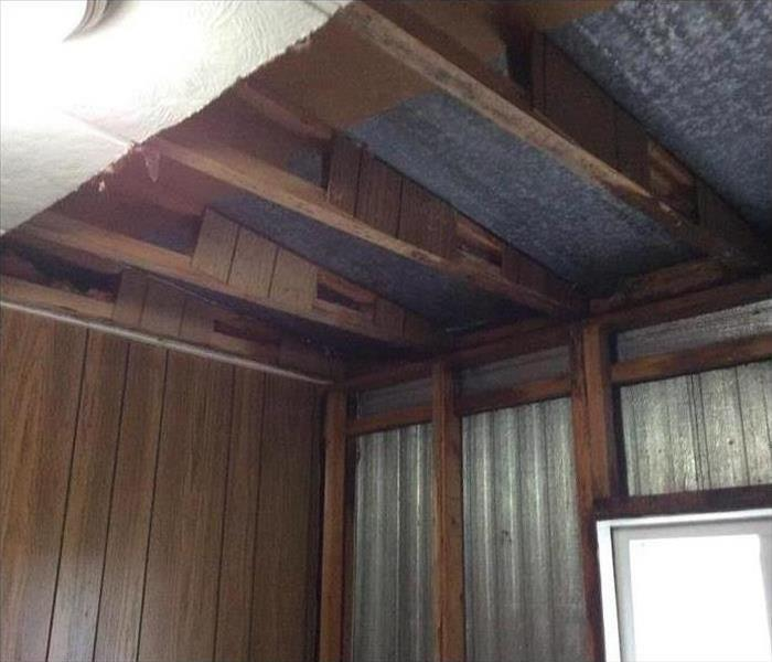 Mold Growth in Wood Village Homeowners Ceiling After