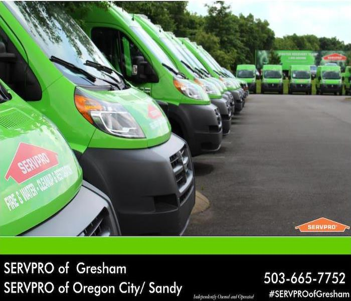 Fleet of green SERVPRO vans.