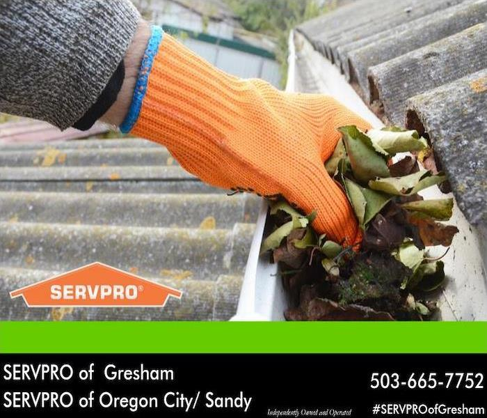Orange gloved hand removing dry leaves from a rain gutter.