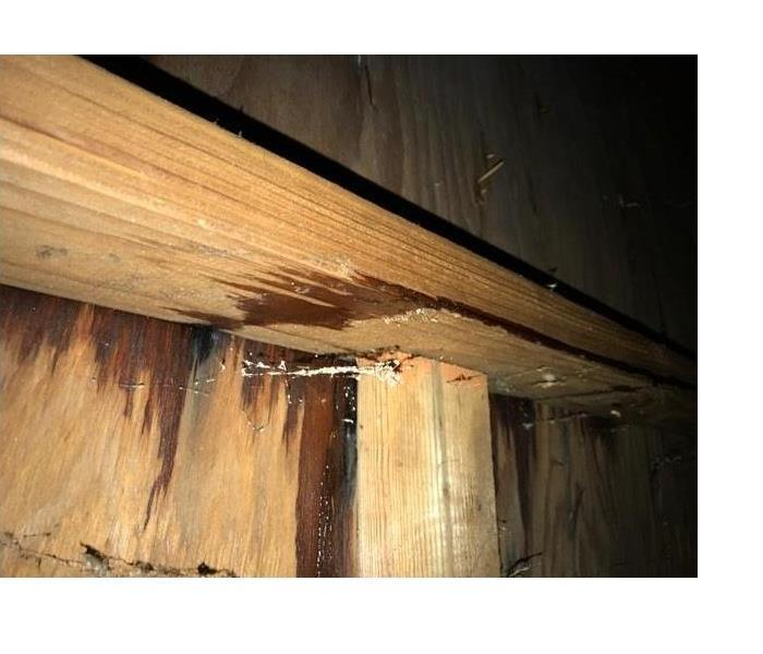 Storm Damage Ice Dams in Your Wood Village Home