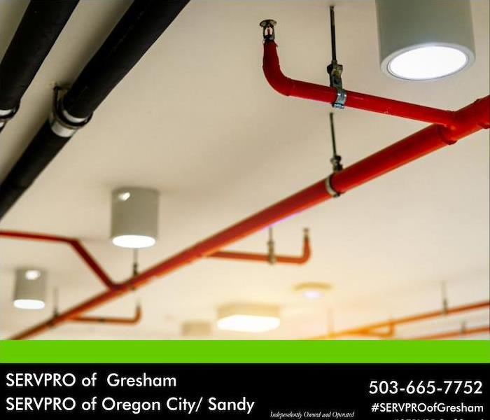 sprinkler pipes on ceiling
