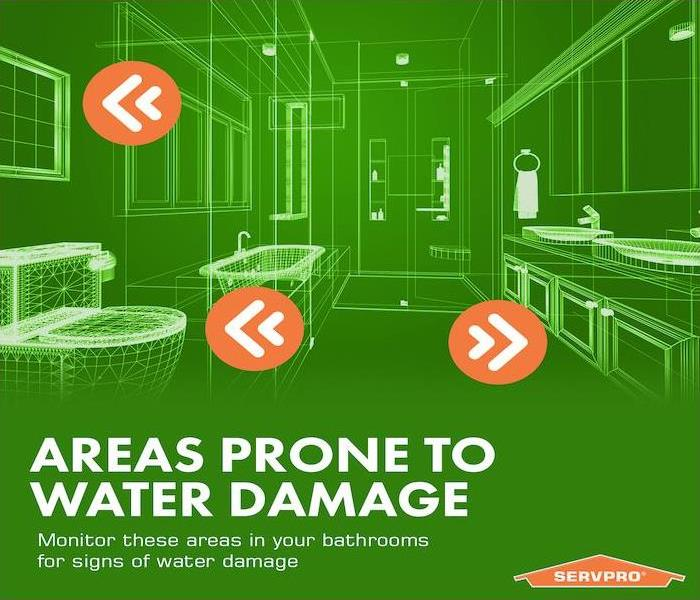 green infographic with bathroom water damages