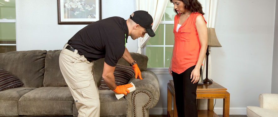 Gresham, OR carpet upholstery cleaning