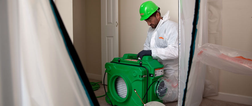 Gresham, OR mold cleanup