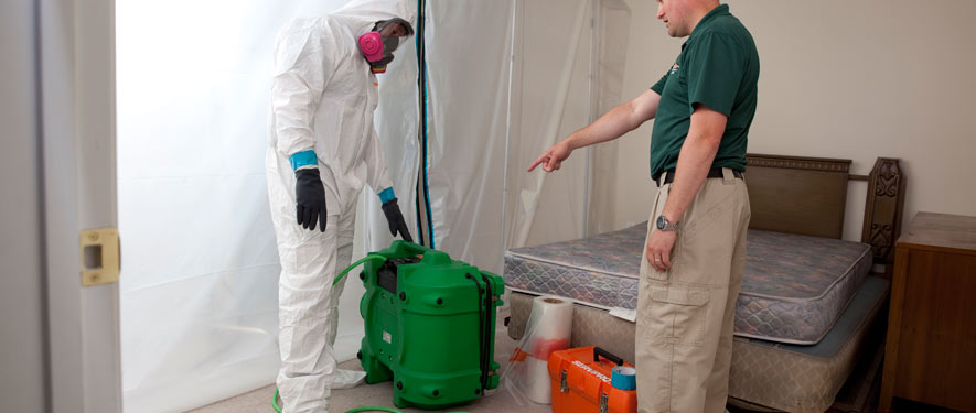 Gresham, OR mold removal process